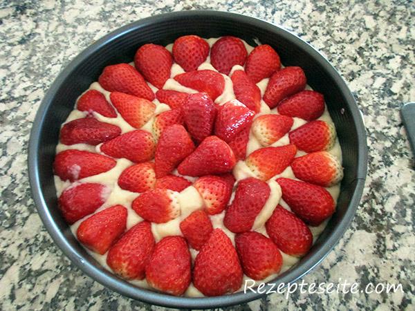 erdbeeren-tortenboden